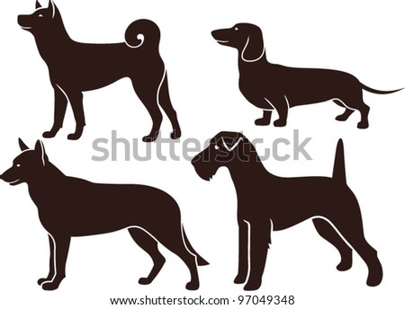 Set of images of dogs - stock vector