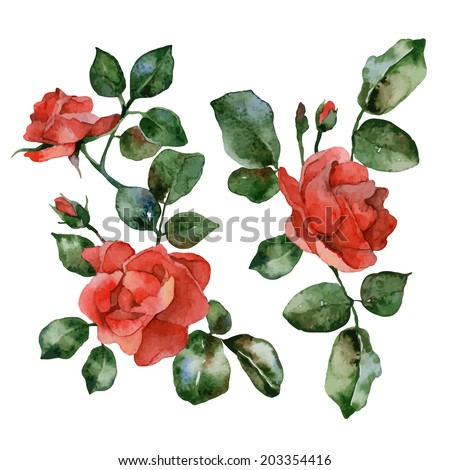 Set of isolated elements of red flowers roses. Vector illustration - stock vector