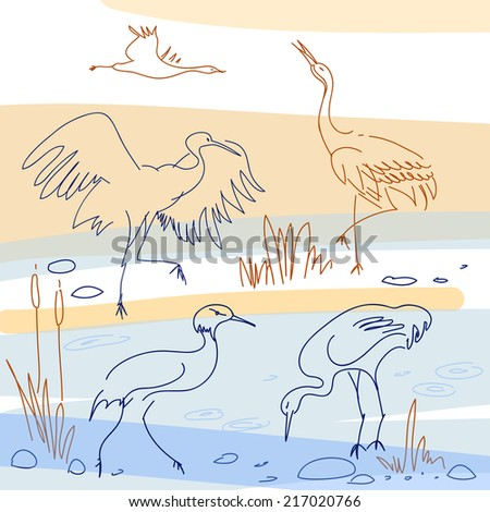 Set of isolated vector sketches. Bird, stork in different angles - stock vector