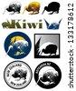 Set of Kiwi icons, vector - stock vector
