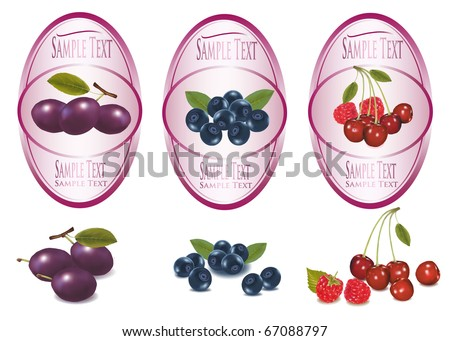 Set of  labels with berries and fruit. Vector. - stock vector