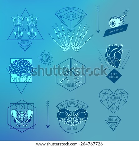 Set of Labels with hand draw human skeleton and anatomy - stock vector