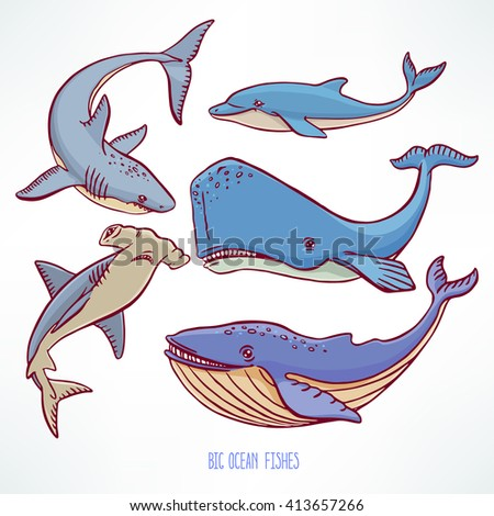 Set of large ocean creatures. hand-drawn illustration - stock vector