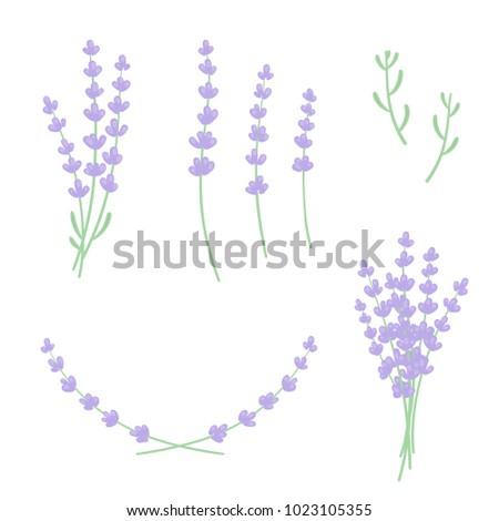 set lavender sprigs flowers leaves floral stock vector 1023105355 rh shutterstock com Lavender Sprig Swag Clip Art Lavender Sprig Drawing Clip Art