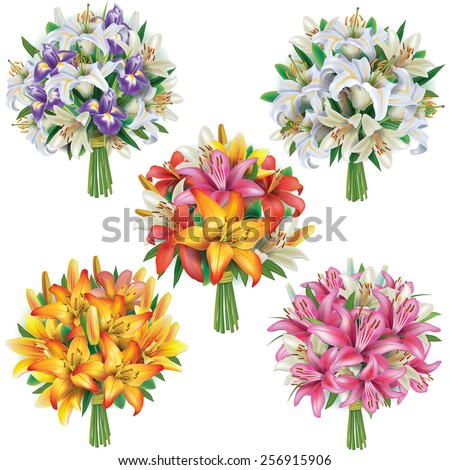 Set of lilies bouquets  - stock vector