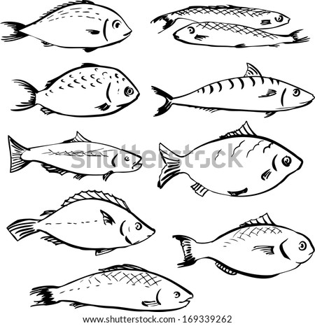 set of linear drawing fishes, vector illustration - stock vector