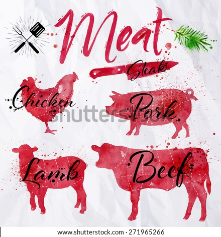 Set of meat symbols, beef, pork, chicken, lamb hand-drawing silhouettes of animals in red on crumpled paper in vintage style. - stock vector