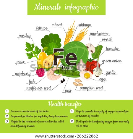 Set of mineral Iron and useful products: lettuce, parsley, mushroom, wheat, garlic, raspberry, egg, onion, cabbage, pear, sorrel, fish, seed, pea, tomato. Healthy lifestyle and diet vector concept. - stock vector