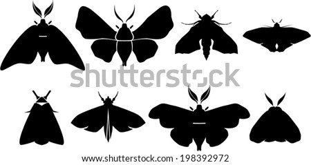 Set of moth silhouettes - stock vector