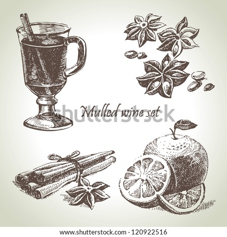 Set of mulled wine, fruit and spices, hand drawn illustrations - stock vector