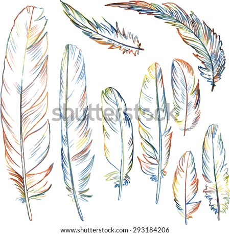 set of multicolor plumes, isolated pencil drawing feathers, creative decoration design elements, hand drawn vector illustration - stock vector