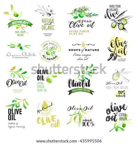 Set of olive oil labels. Hand drawn vector illustrations for olive oil labels, packaging design, natural products, restaurant - stock vector