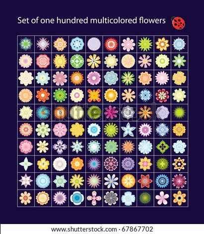 Set of one hundred multicolored  flowers vector - stock vector