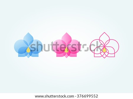 Set of orchid flower (blue, pink, lines) - stock vector