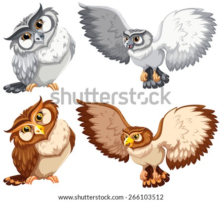 Set of owls in grey and brown color - stock vector