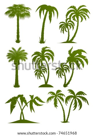 set of palm tree silhouettes vector illustration isolated on white background - stock vector