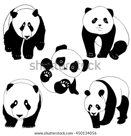 Set of panda bears  - stock vector