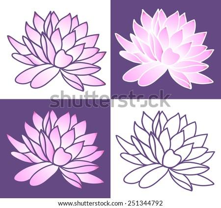 Set of Pink lotus. Vector illustration - stock vector