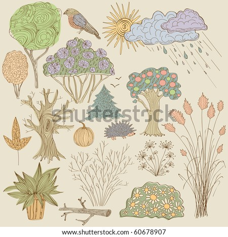 Set of plants - stock vector