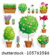 Set of pot plants with flowers and leaves - stock vector