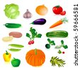 set of raw vegetables - stock vector