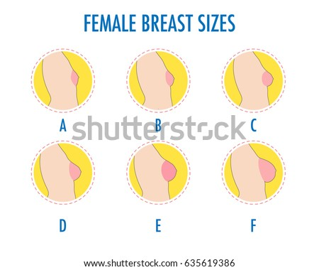 Different boob cup sizes