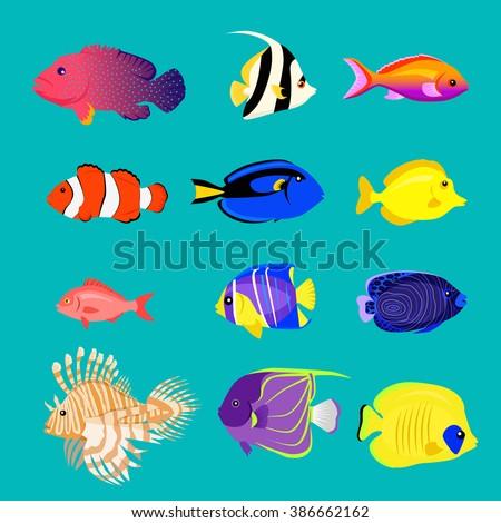 Set of sea fish color design flat. Sea and fish, ocean fish animal, nature cartoon sea fish, wildlife aquarium, underwater life sea fish, exotic sea fish, drawing marine fauna sea fish illustration - stock vector