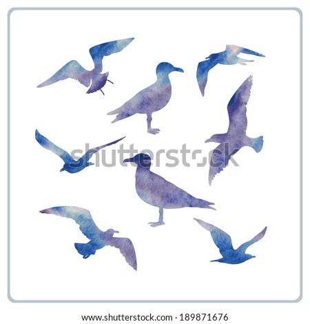 set of seagulls silhouettes - stock vector