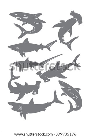 set of sharks - stock vector