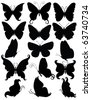 Set of silhouettes of a butterflies. - stock vector