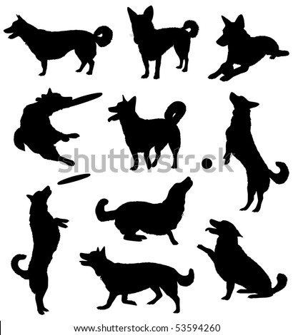 Set of silhouettes of a dog. - stock vector