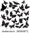Set of silhouettes of butterflies - stock vector