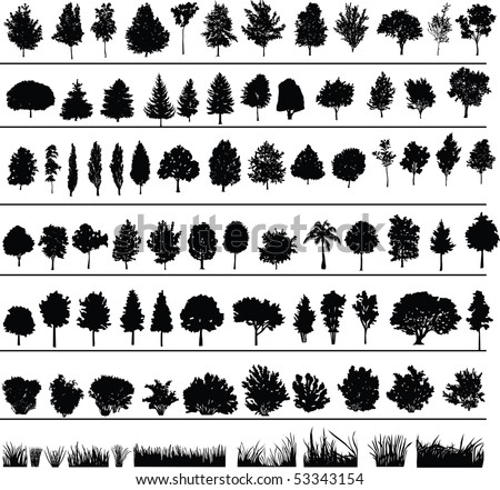 Set of silhouettes of trees, bushes and grass - stock vector