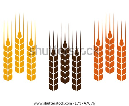 set of simple colorful wheat ears - stock vector