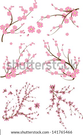 Set of six japanese branch - stock vector