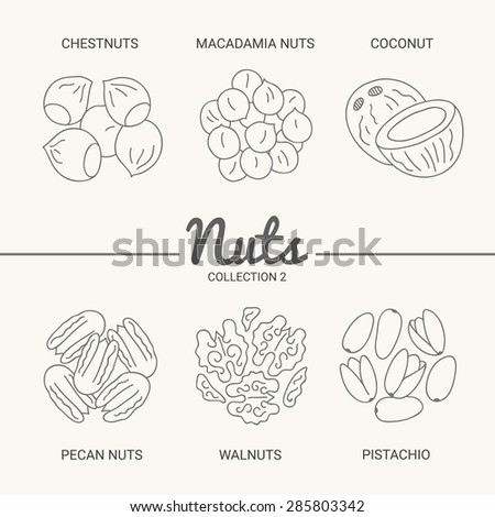 Set of six nuts. Chestnuts, macadamia nuts, coconut, pecan nuts, walnuts and pistachio in vintage style. Contour drawing vector illustration - stock vector