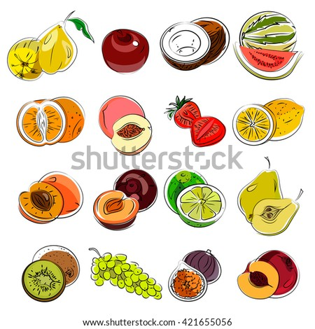 Set of sketch with summer fruits( grapefruit, lemon, lime, pear, watermelon, coconut, apple, apricot, peach, figs, grapes, strawberries, kiwi)