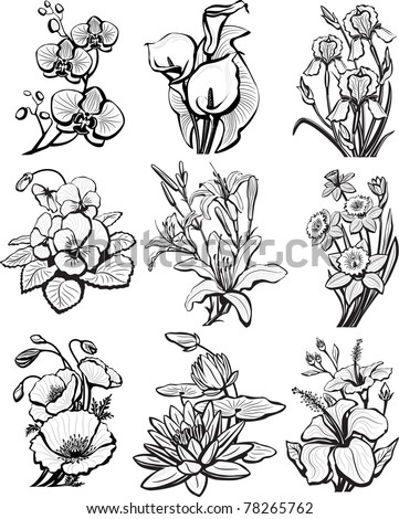 Set of sketches of flowers - stock vector
