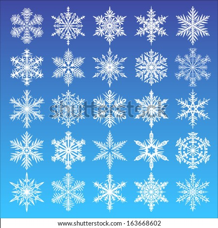 Set of snowflakes design. Winter icons collection. Vector illustration.