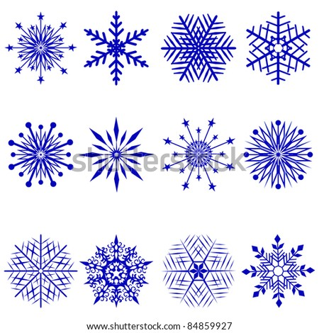 Set of 12 snowflakes. Vector  illustration. - stock vector