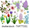 Set of spring flowers. All elements are grouped and easy to select - stock photo