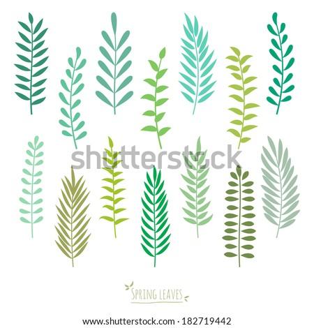 Set of spring green leaves. Elements for design. Spring background. Vector illustration. - stock vector
