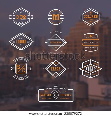 set of 10 stylish line insignias over a blurred NY background - stock vector