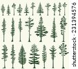 Set of stylized pine silhouettes. Vector illustration. - stock vector