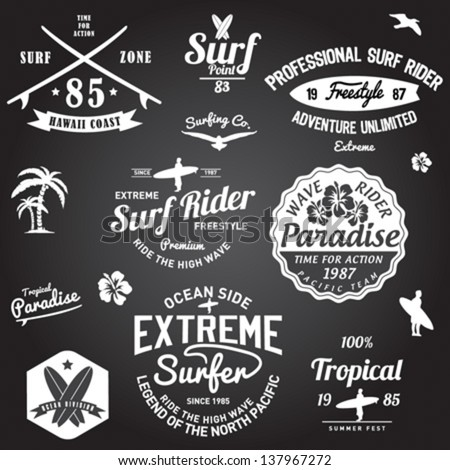 Set of Summer | Surfing Design | Tropical vector set |Hand drawing silhouette | T-shirt Printing | Badge Applique Label - stock vector