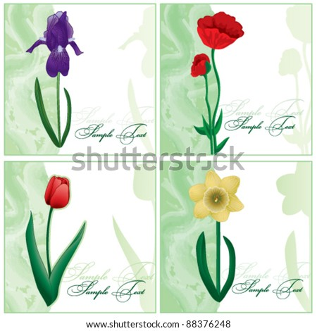 Set of the flower cards - stock vector