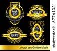 set of the golden vintage labels - stock vector