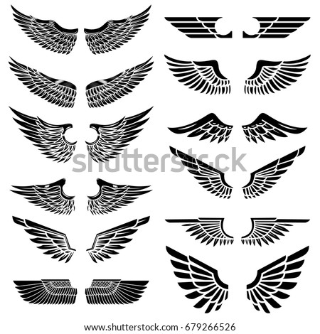 Set of the wings isolated on white background. Design elements for logo, label, emblem, sign, badge. Vector illustration