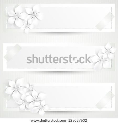 Set of three banners with white flowers and copy space - stock vector