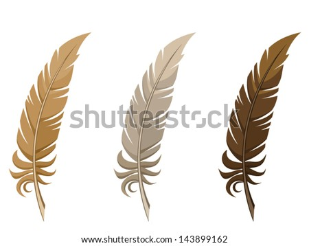 Set of three feathers. Vector illustration. - stock vector